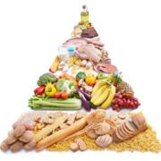 Cicle d'alimentaci� saludable a les diferents etapes de la vida. Alimentaci� Saludable: qu�, quan i com?
