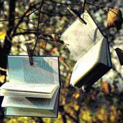 Club de lectura de literatura i Girona. La g�bia d'or